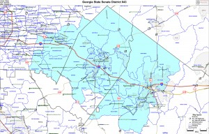 District 43 covers parts of Rockdale, Newton, and the Lithonia area of DeKalb